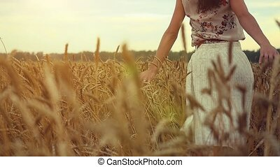 Young woman walking in a wheat field. Hand of a young girl touching corn ears in a field at sunset in slowmotion. hd, 1920x1080
