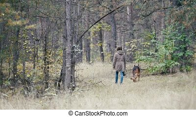 Young woman walking with a shepherd dog in autumn forest goes away
