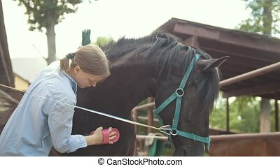 Young woman washes and combs the mane of a horse...