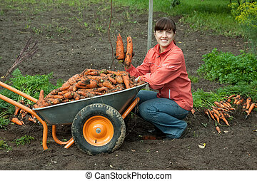 woman with harvested carrots