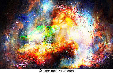 Young woman with parrots in cosmic space.