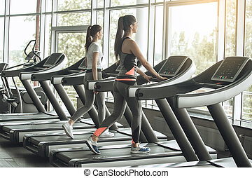 Young women exercise together in the gym