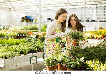 Young women in the garden