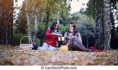 Young women sitting on picnic drinking hot tea from a...