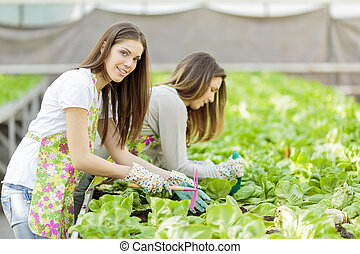 Young women working in the garden