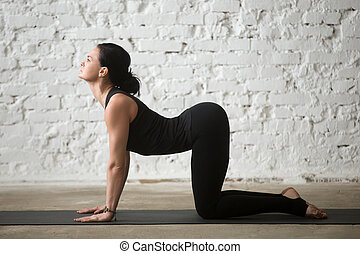 Young yogi attractive woman in Cow pose, white loft background