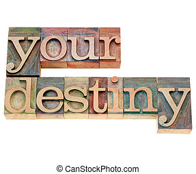 your destiny in letterpress type - your destiny - isolated...