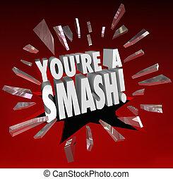 You're a Smash Hit Popular Big Success Feedback Praise