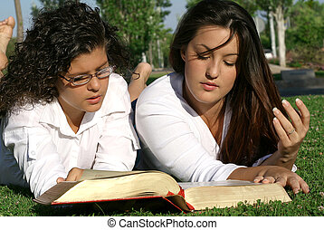 youth or teens reading book or bible outdoors