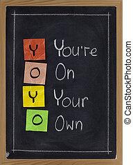yoyo, vous, propre, -, ton