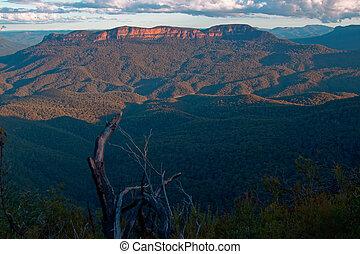 yppig, fjäll landskap, australien
