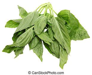 yu, choy, hojas