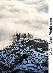 Yuanyang rice terrace at sunrise, Yunnan province, China -...
