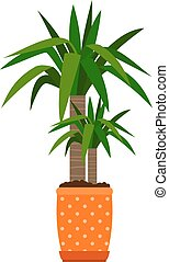 Yucca houseplant in flower pot, vector icon on white...