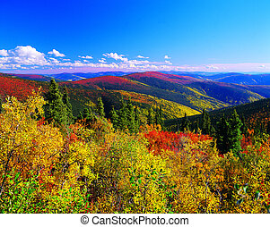 yukon bergen, in, de, herfst, kleur, canada
