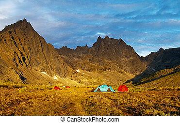 yukon, selva, acampamento