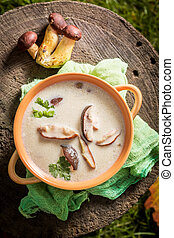 Yummy mushroom soup made of noble mushrooms