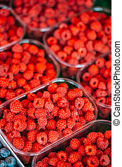 Yummy Red Berries Raspberries At Market In Trays