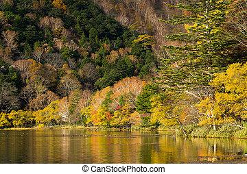 Yunoko lake in Autumn