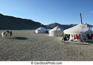 yurt, mongol