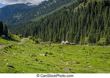 Yurts in Karakol national park, Kyrgyzstan