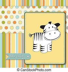 zápor, csinos, zebra, kártya, csecsemő