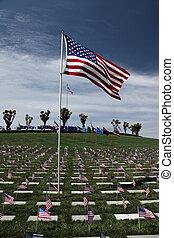 zászlók, amerikai, temető, nemzeti