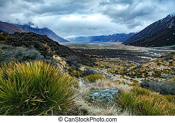 zélande, mt.cook, point, -, parc national, paysage, ...