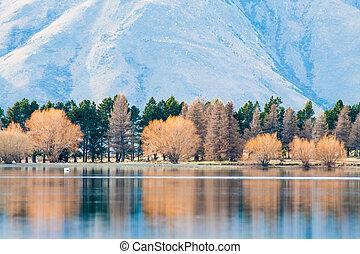 zélande, reflet, arbre, lac, clearwater, automne, lac, nouveau
