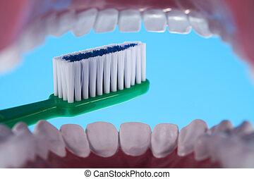 z�hne, dentale gesundheit, sorgfalt, gegenstände