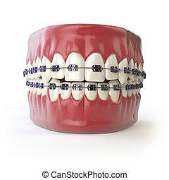 z�hne, mit, hosenträger, oder, träger, freigestellt, auf, white., zahnmedizin, concept.
