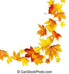 zöld, ősz, repülés