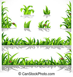 zöld, buja, fű, noha, harmat