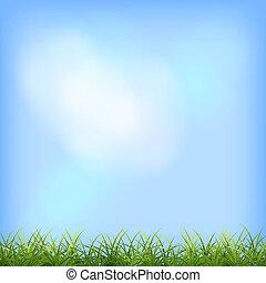 zöld fű, kék ég, természetes, háttér
