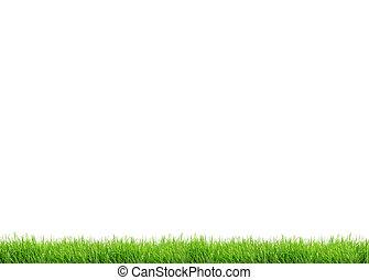 zöld fű