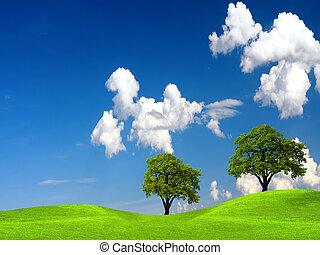zöld fa, alatt, természet