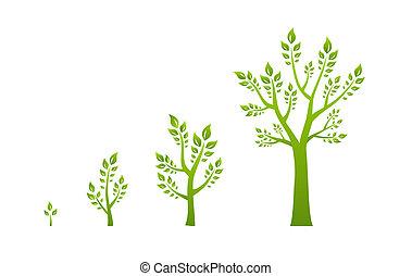 zöld fa, növekedés, eco, fogalom