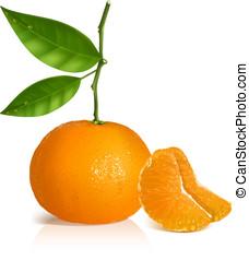 zöld, friss, mandarin, leaves., gyümölcs