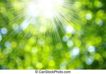 zöld háttér, életlen