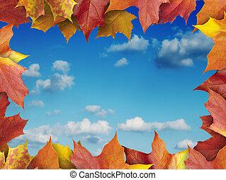 zöld, keret, ősz