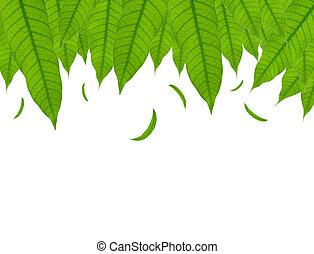 zöld, lefelé, elszigetelt, esés, zöld white