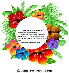 zöld, pálma, keret, hibiscuses