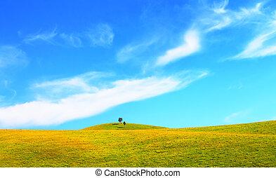 zöld terep, blue, ég