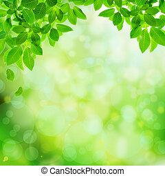 zöld, természetes, elvont, háttér