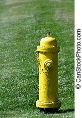 zünden hydranten, gelber