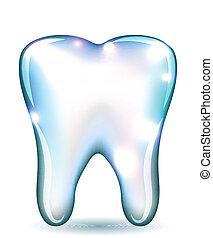 ząb, biały