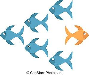 złota rybka, wpływy, różny, droga