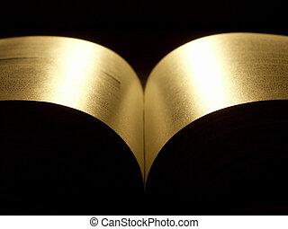 złoty, książka