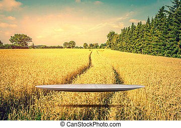 złoty, na, rusztowanie, unosząc, pole