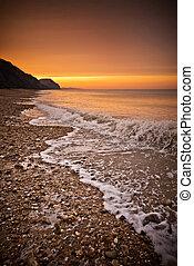 złoty, plaża